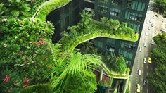 Is the trend for foliage on buildings a fig leaf for poor design?