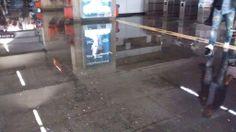 ignaziomarino tra #metroA allagata e #metroB che continua a violare dignità e diritti umani:che mi consigli di prendere x andare a lavoro?