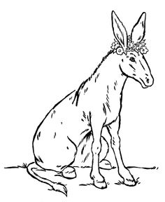 68 best donkey and mule pictures images in 2019 print coloring Large Breeds of Donkeys farm animal coloring page donkey with flowers activity sheets for kids activities for kids