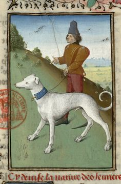 Gaston Phoebus. Book of hunting. Before 1476, French. Paris, Bibl. Mazarine, ms. 3717, f. 36