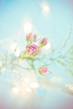 Ты скажешь, эта жизнь — одно мгновенье. Ее цени, в ней черпай вдохновенье. Как проведешь ее, так и пройдет, Не забывай: она — твое творенье. [изображение] [изображение] [изображение] [изображени... — Дневная доза вдохновения... | B e a u t é