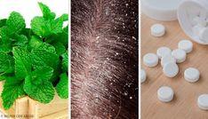 Chociaż na rynku dostępnych jest wiele produktów leczących łupież, możemy także skorzystać z cennych właściwości niektórych naturalnych składników. Home Remedies, Natural Remedies, Egg For Hair, Body Care, Beauty Hacks, Avocado, Ethnic Recipes, Create, Egg Hair
