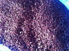Truffle dried cubes 100 grams #JOHNLEEMUSHROOM