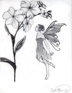 Image result for fairy drawings