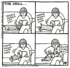 Off The Leash Doggy Cartoons Shop: The Drill - Throw Pillow: A creation by Rupert Fawcett from the Off The Leash (all rights reserved), a daily cartoons range featuring real conversations between dogs! Dachshund Funny, Dachshund Love, Funny Dogs, Funny Animals, Cute Animals, Daschund, Corgi Funny, I Love Dogs, Puppy Love