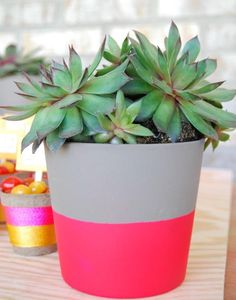 A quick way to give potted plants a splash of color.