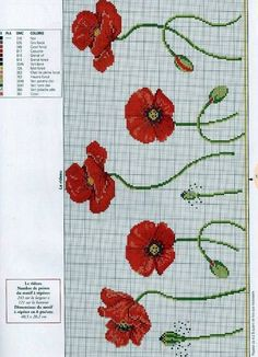 Resultado de imagen de free cross stitch patterns of poppies Cross Stitch Borders, Cross Stitch Flowers, Counted Cross Stitch Patterns, Cross Stitch Charts, Cross Stitch Designs, Cross Stitching, Cross Stitch Embroidery, Embroidery Patterns, Cross Stitch Finishing