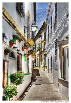 Narrow streets series:streetlights and planters in Cordoba by Juana Maria Ruiz, via 500px