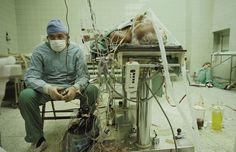 medico descanza en quirofano junto a paciente luego de operacion a corazon abierto que duro 27 horas y fue exitosa