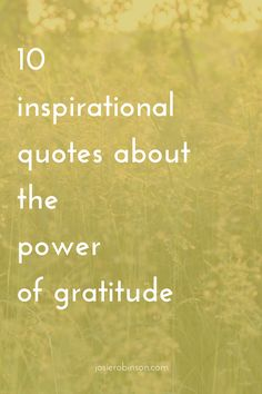 Whenever I need inspiration to keep my gratitude practice going, I turn to  beautiful quotes like these. They always lift my spirits and remind me of  how powerful and life changing the daily practice of gratitude is.  I hope you enjoy them as much as I do...these are my 10 all-time favorite  quotes about the power of gratitude...