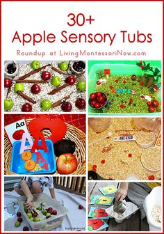 ideas for apple sensory tubs (sensory bins); perfect for home or classroom in the fall or for an apple unit Sensory Tubs, Sensory Boxes, Sensory Activities, Preschool Activities, Sensory Play, Austin Activities, Fall Sensory Bin, Alphabet Activities, Motor Activities