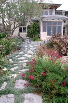 San Diego Landscape Designer: landscape plans and onsite consulting