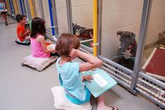 The unique sight of a group of children in Missouri, practicing their reading in front of nervous shelter dogs to help calm them...
