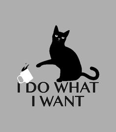 """""""I Do What I Want"""" funny heather gray cat t-shirt."""