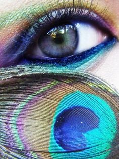 Peacock-inspired eye makeup.  I've tried this, but with only the teal/navy/green/gold.  Would be interesting to incorporate the darker green, bronze, and purple.