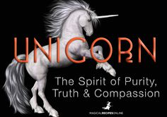 The Unicorn  The Spirit of Purity, Kindness and Compassion