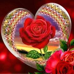 Galaxy Wallpaper Iphone, Love Wallpaper Backgrounds, Heart Wallpaper, Flower Wallpaper, Cute Wallpapers, Good Morning Beautiful Flowers, Good Night Flowers, Beautiful Rose Flowers, Love Rose
