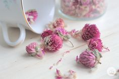TEA & SALT // beautiful flower infusion that sooth sore throats and flavored salt tubes.