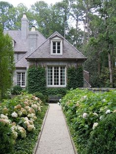 Stone pathway lined with hydrangeas, climbing foliage, beautiful curb appeal; a welcoming entry