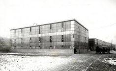 Steiff factory - 1903