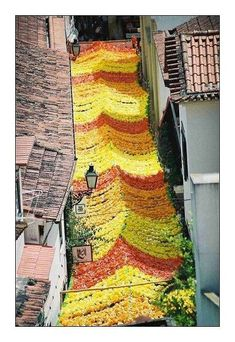 """The festival """"Festa dos Tabuleiros"""" in Tomar is one of the most beautiful traditions of Portugal. The streets are decorated with natural and paper flowers."""