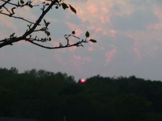 The view from our yard at Sunset!