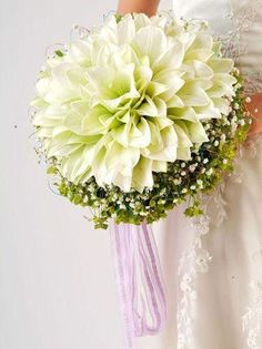 """{This Is A """"Combo"""" Biedermeier & Composite/Glameria Bouquet Of: Light Green Amaryllis, White Gypsophila (Baby's Breath), & Green Bupleurum.... A Lovely Lavender, Organza Ribbon Is Tied At The Bottom Of The Bouquet··············}"""