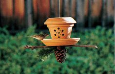 Birding from the Backyard! Lots of Tips, Ideas Tutorials on birding. Learn how to make bird feeders bird houses learn all about birding! Backyard Projects, Outdoor Projects, Garden Projects, Make A Bird Feeder, Bird Feeders, Bird House Kits, Clay Pot Crafts, Diy Clay, Terracota