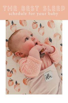 an honest review: littles one sleep program (ages 3-12 months)
