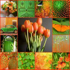 Orange And Lime Green Kitchen : ... Green And Orange on Pinterest  Playroom Color Scheme, Orange Kitchen