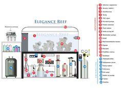 Sve što vam treba za morski akvarij, komplet popis opreme i informacije