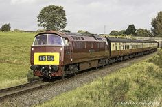 """BR Class 52: D1062 """"Western Courier"""" Electric Locomotive, Diesel Locomotive, Holland, Train Pictures, British Rail, Electric Train, Great Western, Train Engines, Model Train Layouts"""