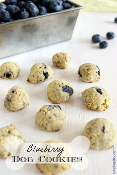 Blueberry Dog Cookies - simple & healthy DIY snack for your dog! Lolathepitty.com