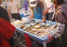 20081005姪浜漁港_3