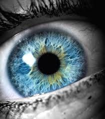 pretty blue eye - Google Search