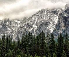 Winter Day at Yosemite National Park Wallpaper