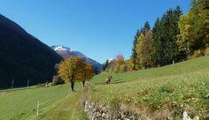 Ultener Höfeweg - Wanderung im Ultental