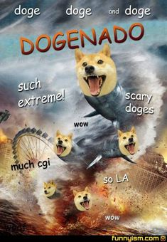 Too damn funny! Sharknado Trailer - Tara Reid, Ian Ziering and John Heard star in this Syfy TV movie about a deadly tornado full of sharks, debuting Thursday, July at 9 PM ET. Sharknado Movies, Sharknado Costume, Tara Reid, Tony Hawk, Funny Doge, Doge Meme, Funny Pets, Horror Films, Poster