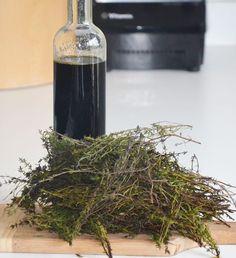 Herbal Remedies, Home Remedies, Natural Remedies, Smoothie Drinks, Fruit Smoothies, Herbs For Health, Happy Foods, Healing Herbs, Healthy Tips