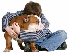 No Dog Left Behind. (the pet friendly real estate company in Miami) Hybrid Realty Group