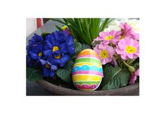 zerowastefamilie - Ostern ohne Müll - Ostereiersuche Tricks, Eggs, Life, Egg
