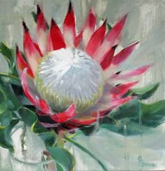 """Saatchi Art is pleased to offer the painting, """"Protea,"""" by SARAH SPENCE. Original Painting: Oil on Canvas. Protea Art, Protea Flower, Acrylic Flowers, Abstract Flowers, Painting Flowers, Oil Painting Abstract, Painting & Drawing, Painting Canvas, Oil Paintings"""