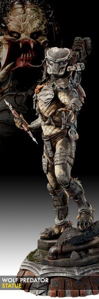 Wolf Predator Statue $299.99    Sideshow Collectibles is proud to introduce the newest entry in our Predator statue collection, the Wolf Predator. The fierce warrior stands 20 inches tall, fully armed with his trademark spear and shoulder cannon.