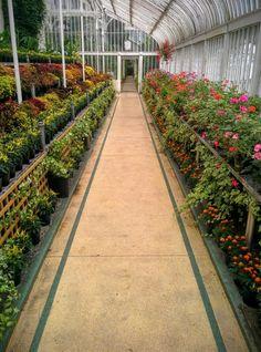 Botanic Gardens - Белфаст - отзывы Botanic Gardens - TripAdvisor