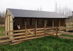 Outpost Large Holding Stalls Size: x x high Great for large horses with a generous stall size of x Mini Horse Barn, Simple Horse Barns, Horse Barn Plans, Barn Stalls, Horse Stalls, Goat Shed, Horse Arena, Horse Shelter, Farm Layout