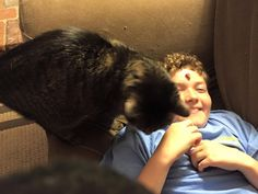 Ryan is letting the cat lick him! Let It Be, Cats, Gatos, Kitty, Cat, Cats And Kittens, Kittens