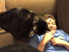 Ryan is letting the cat lick him! NOooooo :)