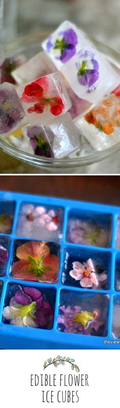 These edible flower ice cubes are so cute, if they were made of resin they'd make the prettiest door handles.