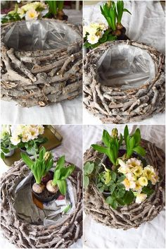 DIY spring decoration yourself make spring decoration for table. Deco idea with basket Ch . DIY spring decoration yourself make spring decoration for table. Deco idea with basket Christmas roses Hyacinths primrose moss and natural decoration . Fleurs Diy, Deco Nature, Primroses, Christmas Rose, Christmas Baskets, Deco Floral, Diy Décoration, Sell Diy, Ikebana