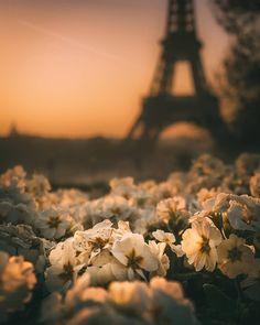 Paris, France brotherside